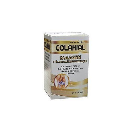 Colahial - kolagen kwas hialuronowy chondroityna 60 kaps.