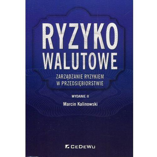 Ryzyko walutowe Zarządzanie ryzykiem w przedsiębiorstwie - Marcin Kalinowski DARMOWA DOSTAWA KIOSK RUCHU (9788381020237)