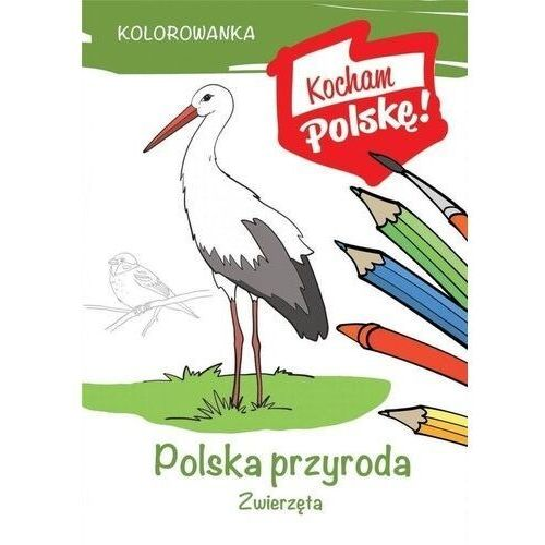 Kolorowanka polska przyroda zwierzęta - krzysztof kiełbasiński