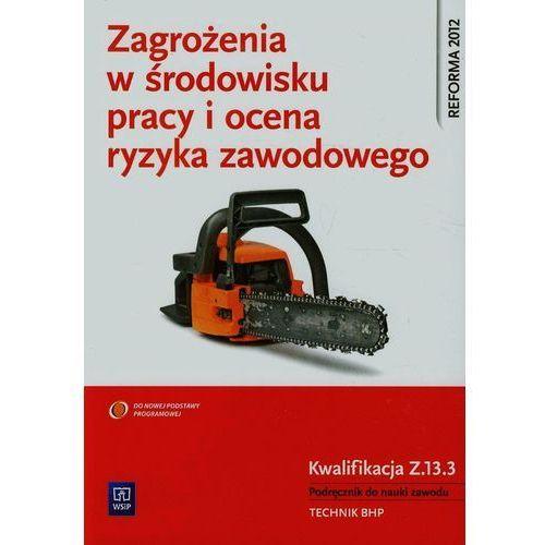 Zagrożenia w środowisku pracy i ocena ryzyka zawodowego Podręcznik do nauki zawodu technik BHP Z.13.3 - Wysyłka od 3,99 - porównuj ceny z wysyłką (520 str.)