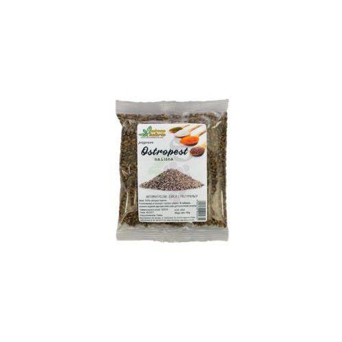 Zdrowa kaloria Ostropest plamisty nasiona 100g (5906190995834)