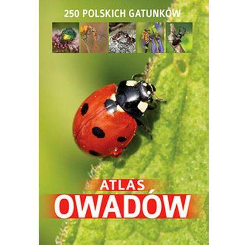 Atlas owadów. 250 polskich gatunków + zakładka do książki GRATIS (192 str.)