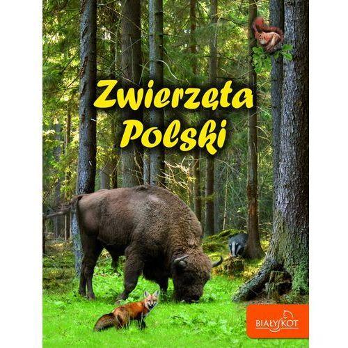 Zwierzęta Polski (32 str.)