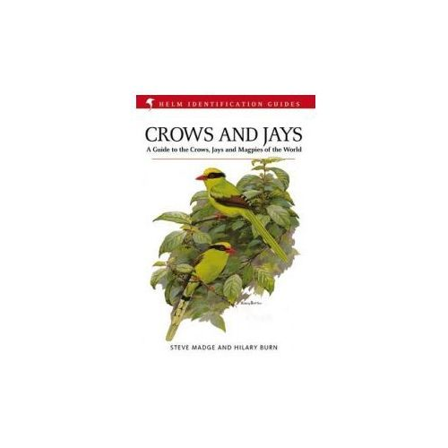 Crows and Jays (9781408157381)
