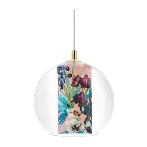 Kaspa - lampa wisząca feria s, różowa - różowy ||złoty (5902047305214)