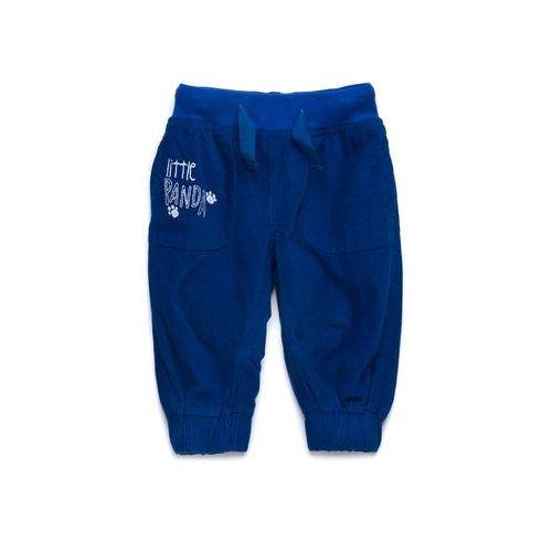 Spodnie Niemowlęce 5L2708 - produkt z kategorii- spodenki dla niemowląt