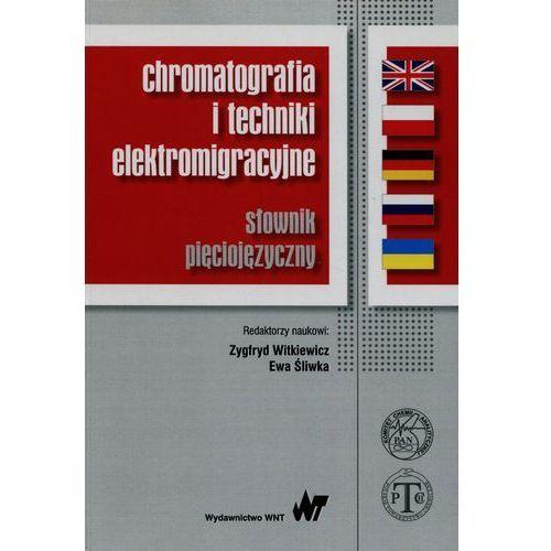 Chromatografia i techniki elektromigracyjne (9788301187187)