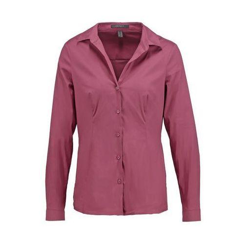 Esprit Collection Koszula berry red - oferta [0519d148e3bf657b]