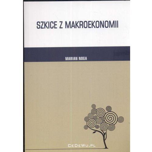 Szkice z makroekonomii (302 str.)