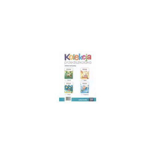 Kolekcja przedszkolaka Karty pracy czterolatka Pakiet (9788326713316)