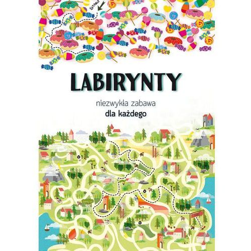 Labirynty (9788381141048)