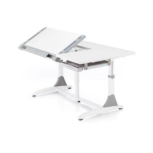 Biurko regulowane comf-pro king desk marki Ergodesk