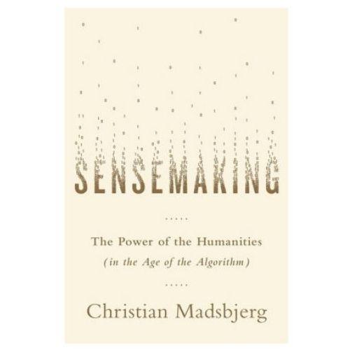 Sensemaking (9781408708361)