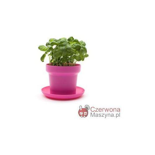 2 Doniczki na zioła Authentics Green różowe - oferta [15f9d2ae4fa3b5b0]