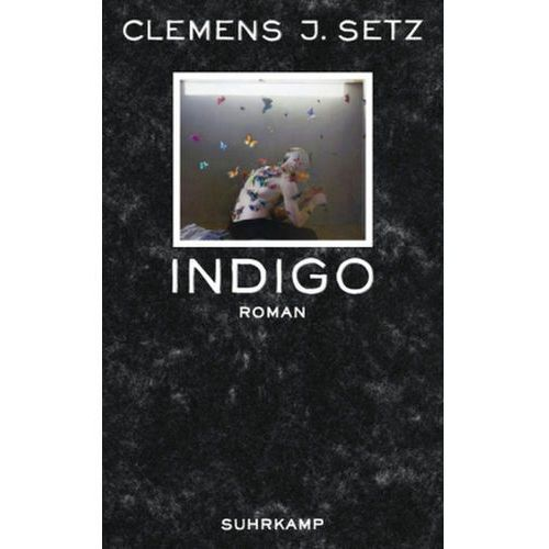 Clemens J. Setz - Indigo