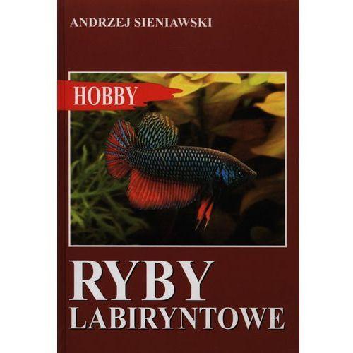 Ryby labiryntowe - Andrzej Sieniawski (2004)