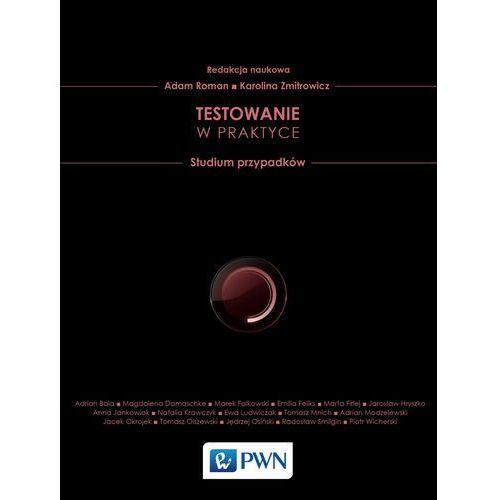 Testowanie w praktyce Studium przypadków (226 str.)