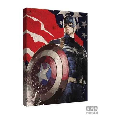 Obraz MARVEL Capitan America: The Winter Soldier PPD342, PPD342