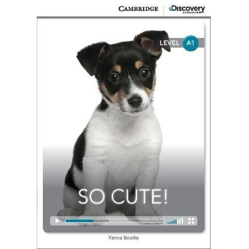 So Cute! Cambridge Discovery Education Interactive Readers (z kodem), Kenna Bourke