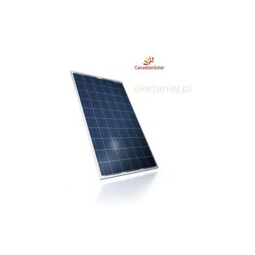 Canadian Solar Ogniwo słoneczne polikrystaliczne 240W, kup u jednego z partnerów