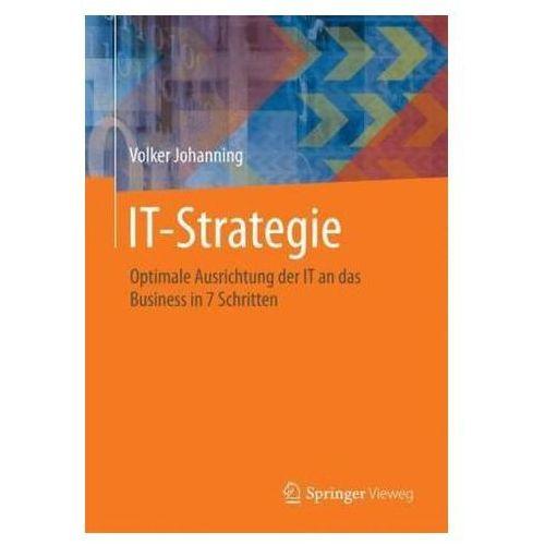 It-Strategie Optimale Ausrichtung Der It an Das Business in 7 Schritten (9783658020484)
