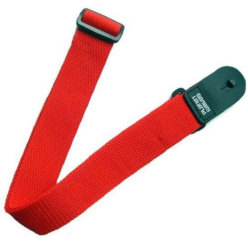 Planet Waves PWS101