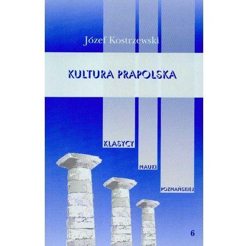 Kultura prapolska Tom 6 (9788370635060)