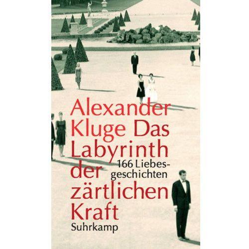 Das Labyrinth der zärtlichen Kraft, m. DVD