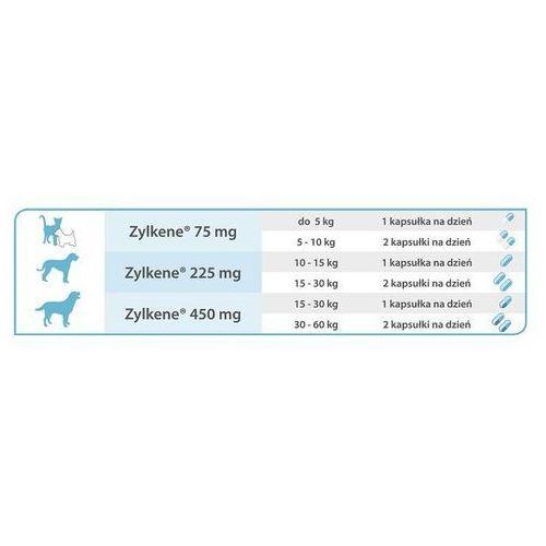 Vetoquinol zylkene 75mg - 10 tabletek dla kotów i psów o wadze do 10 kg - zylkene 75mg - 10 tabletek dla kotów i psów o wadze do 10 kg (3605874350854)
