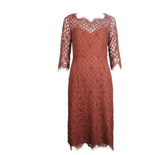 """Twinset sukienka """"lace dress"""" marki Twin-set"""