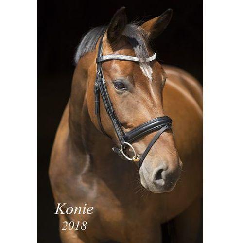 Kalendarz konie 2018 13k