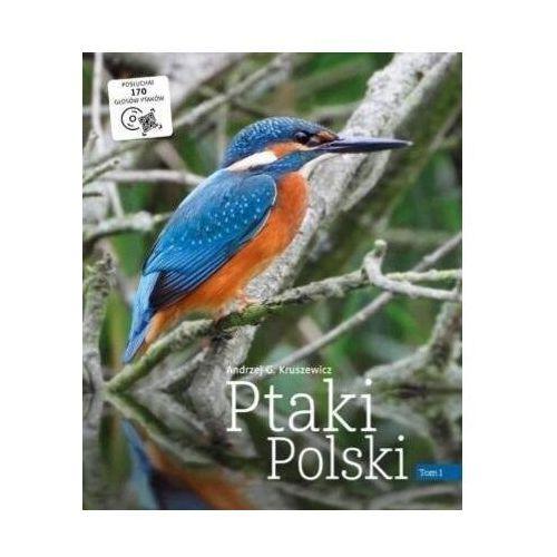 Ptaki polski. tom 1 - andrzej g. kruszewicz (9788377634127)