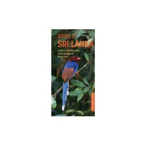 Pocket Photo Guide to the Birds of Sri Lanka (9781472932938)