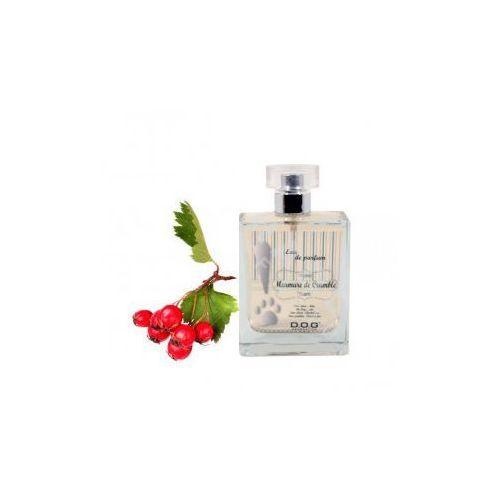 Dog generation murmure de crumble 100ml - perfumy o słodkim zapachu czerwonych jagód (3700380347999)