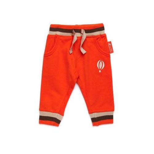 Spodnie Niemowlęce 5M2816 - produkt z kategorii- spodenki dla niemowląt