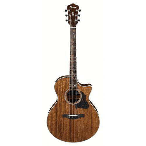 ae 245 nt gitara elektroakustyczna marki Ibanez