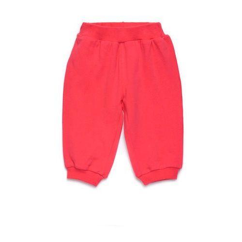 Spodnie Niemowlęce 5M2807 - produkt z kategorii- spodenki dla niemowląt
