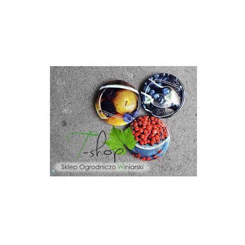 ZAKRĘTKA DO SŁOIKÓW fi 66 owoce (2) 10 szt. (klik), Prz000064