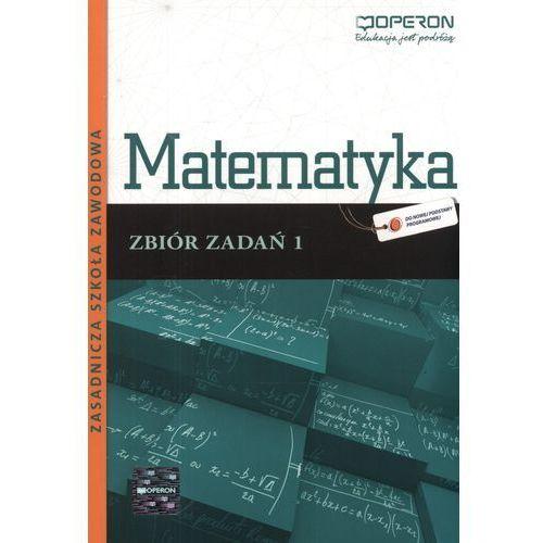 Matematyka 1 Zbiór zadań (9788376805177)