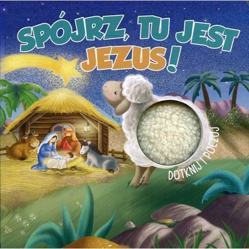 Spójrz, tu jest Jezus! Dotknij i poczuj- bezpłatny odbiór zamówień w Krakowie (płatność gotówką lub kartą)., WDS