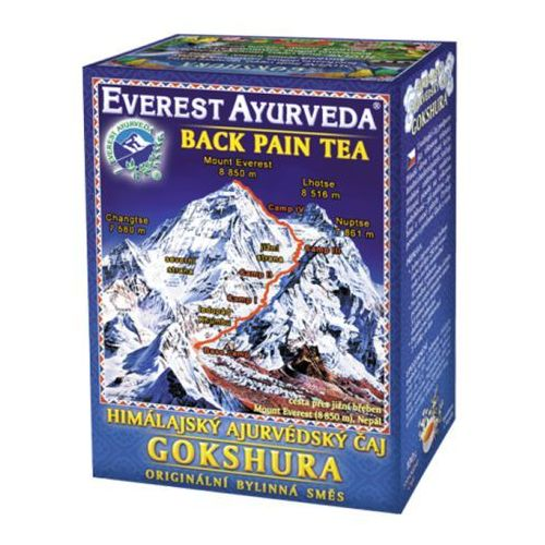 Everest ayurveda Gokshura - ból pleców i kręgosłupa