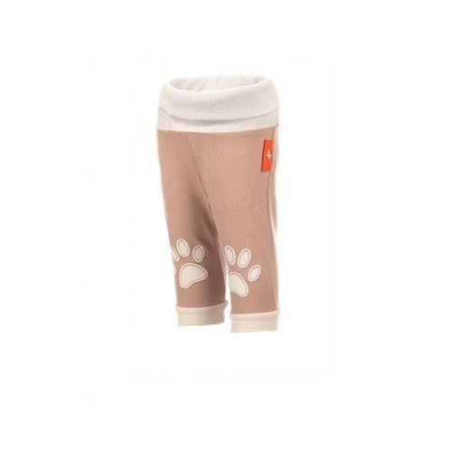 SPODNIE NIEMOWLĘCE 5M2815. - produkt z kategorii- spodenki dla niemowląt