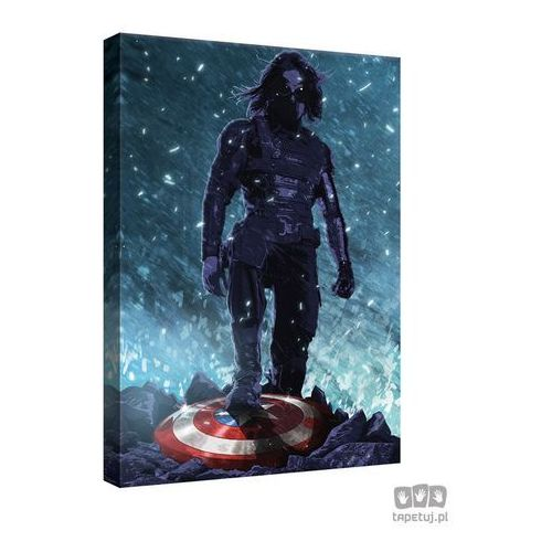 Consalnet Obraz marvel capitan america: the winter soldier ppd343