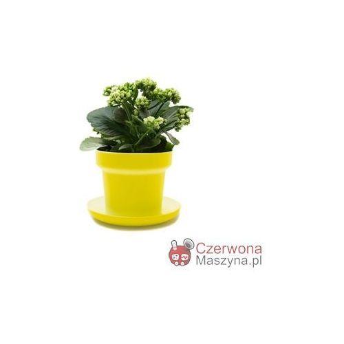 2 Doniczki na zioła Authentics Green żółte - oferta [0558487907c50634]