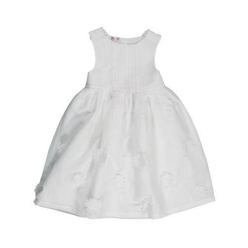 Sukienka - oferta [0562d744a33fb67a]
