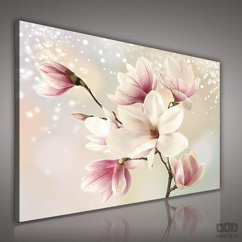 Obraz Kwiaty na srebrnym tle PP2134 - produkt z kategorii- Obrazy