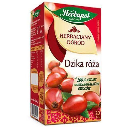 Herbatka owocowo-ziołowa z dzikiej róży 20x4g marki Herbapol