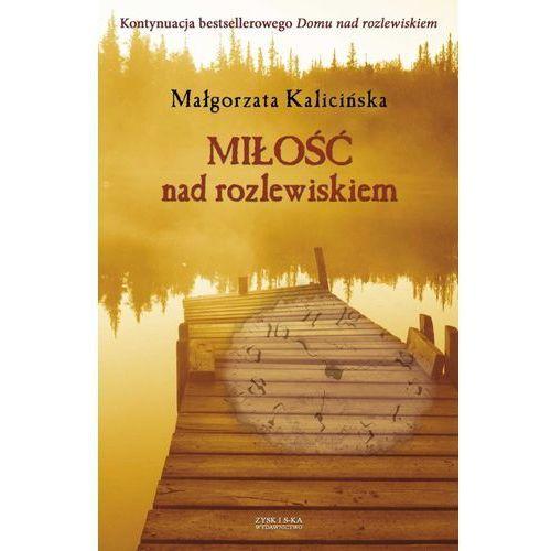 Zysk i s-ka Miłość nad rozlewiskiem (9788375062663)