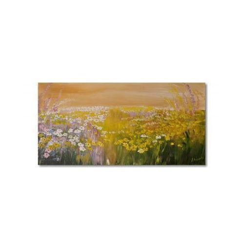 Letnia łąka, obraz ręcznie malowany (obraz)