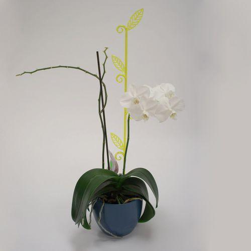 Pręcik do storczyków liść, przeźroczysta zieleń, 2 szt. - oferta [4518692c8535a51e]